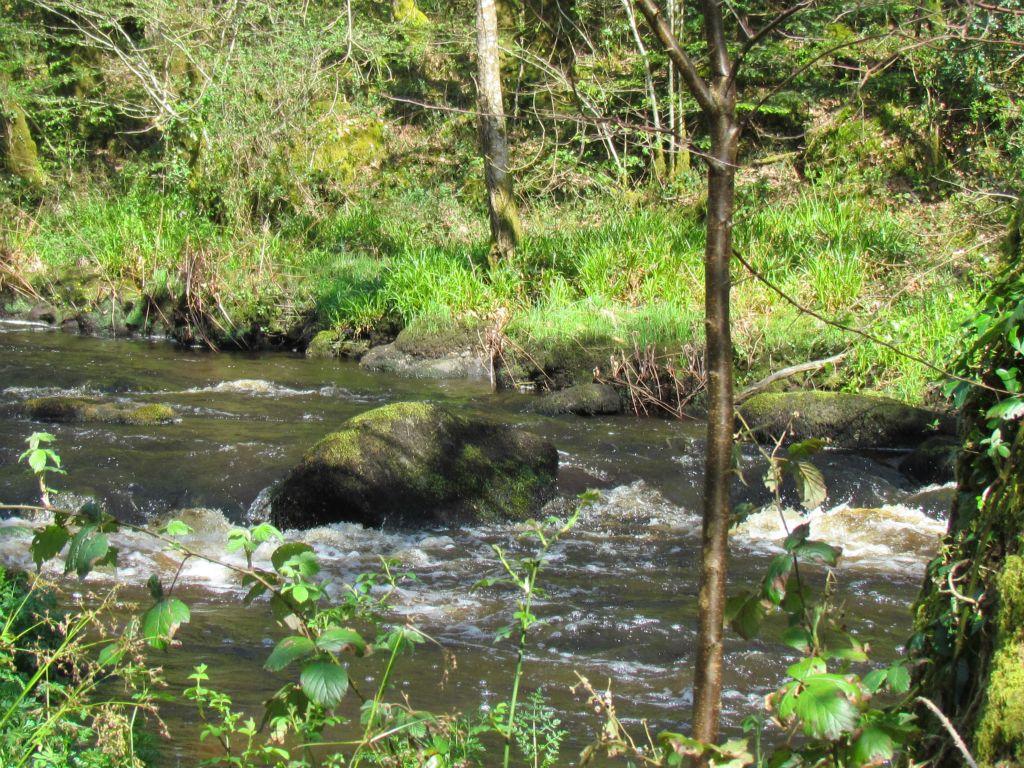 ruisseau du Naic Querrien