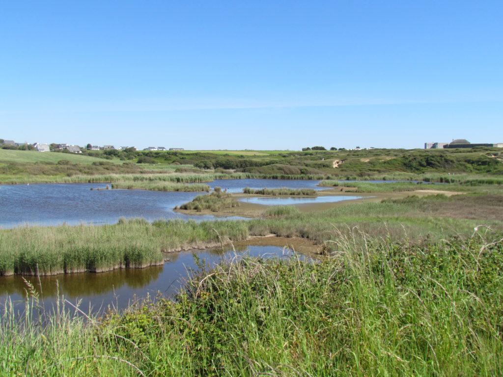 étang du loch Guidel